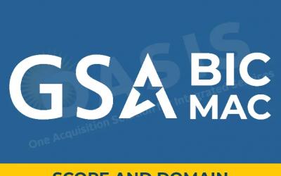 GSA BIC MAC- Scope And Domain/Reserve Structure